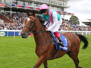 Enable fails to make history