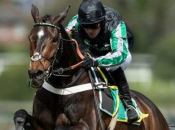 Altior Out of Kempton