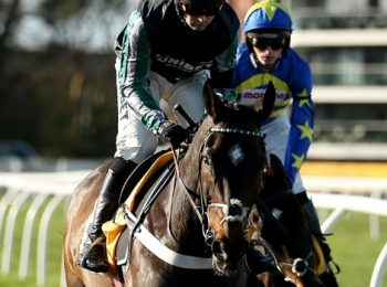 Altior to take part in Super Saturday race in Newbury